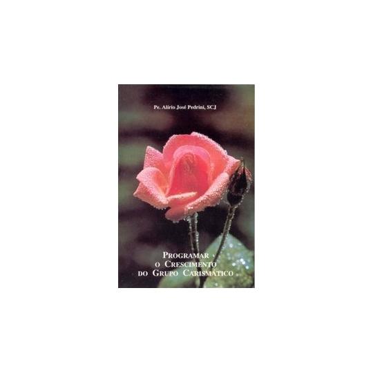 Livro Programar o crescimento do grupo carismático